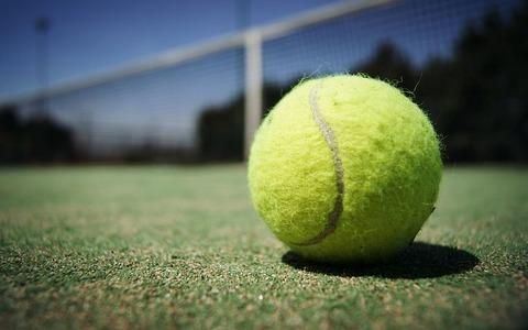 tennis-ball-984611__480