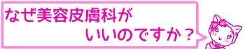 f:id:bashii:20190228212346j:plain