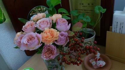 20121119花