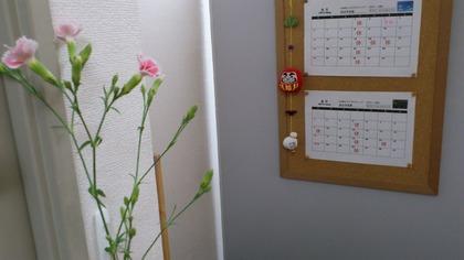 20130503花 (1)