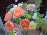 20090531花