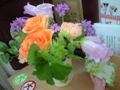 20100517花