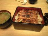 20100108うな丼