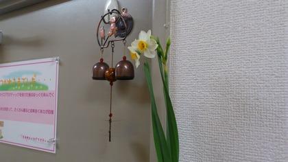 20130118花