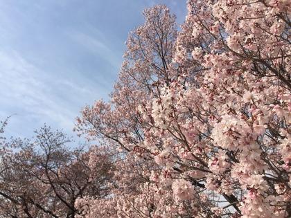 2017-04-05-14-51-23