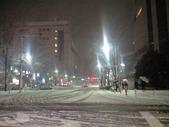20100201雪景色