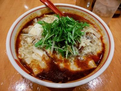 麻辣酸辣湯麺