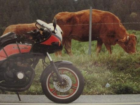 20190221 バイクの鉄人 ⑤