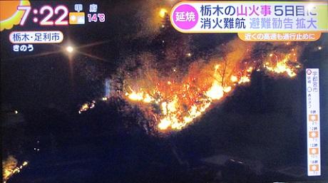 20210225 足利 山火事 ①