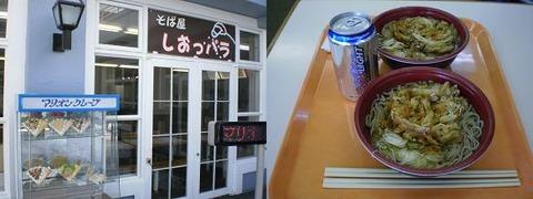 20110220ハンタマ①
