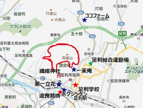 20210225 足利 山火事 ②