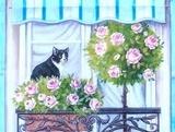 4猫とバラ
