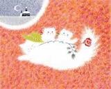 白猫とバラ