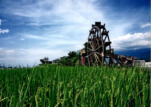 20110615090850-農作景觀(佳36)