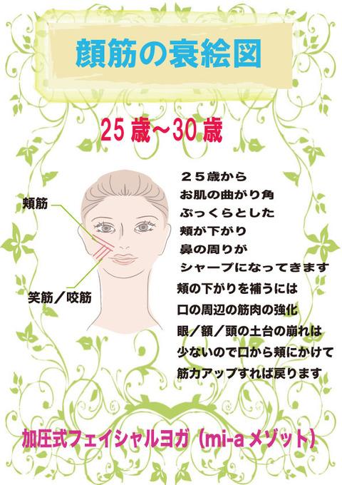 25〜30顔筋衰え