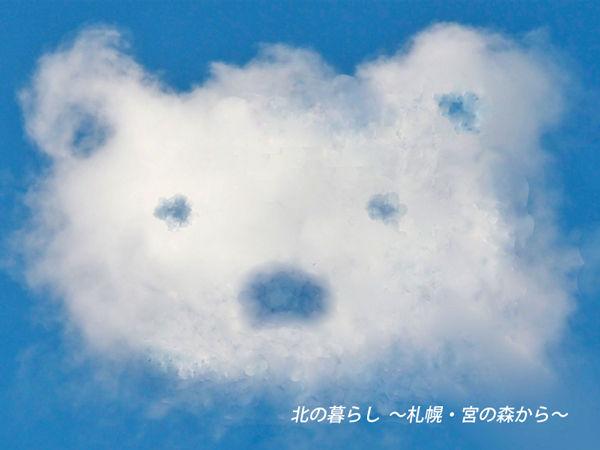 クマ雲北くら1