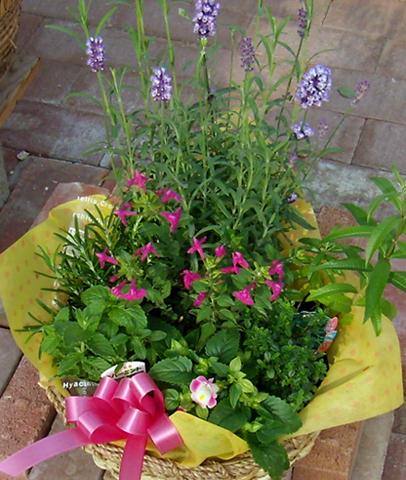 ハーブと花の花かごセット