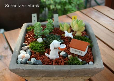 犬の小物を飾った多肉植物の寄せ植え