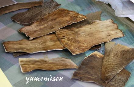 タケノコの皮