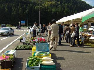 石川農業青年のテント市でシクラメンの販売