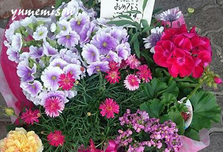 花かごセット 大