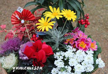 迎春の寄せ植え