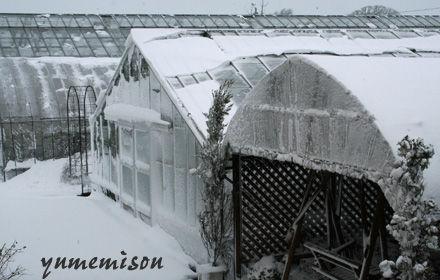 パウダースノーで冷え込みが強い