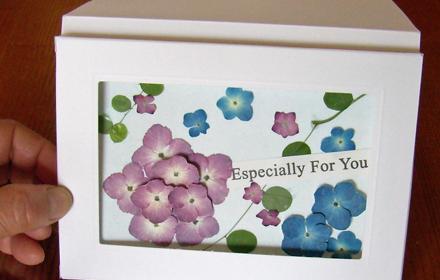 押し花のポストカード
