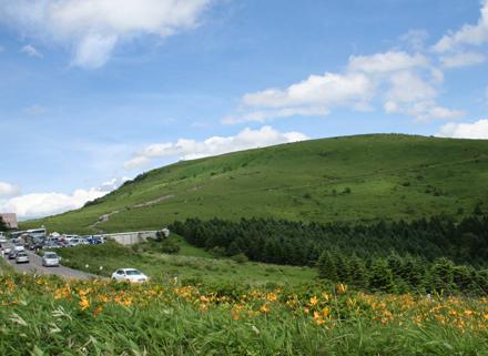霧ヶ峰の草原にはニッコウキスゲが咲き、観光客がいっぱい!
