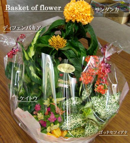 花かごセットを発送しました。