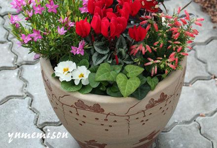 可愛い陶器鉢