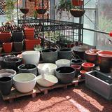 店内の陶器売り場