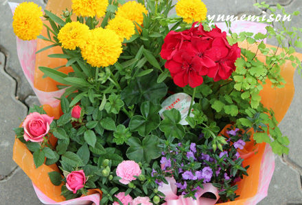 花かごセット 中