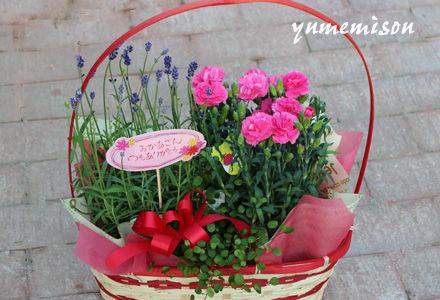 ラベンダーとカーネーションの花かご