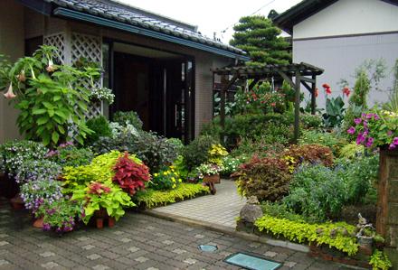 向かって右側の花壇