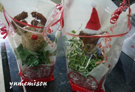 クリスマスバージョンのミニグリーンを簡単ラッピング