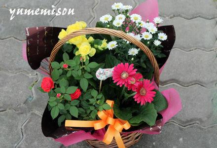 小さい花カゴセット
