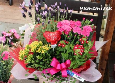 母の日の花かごセット