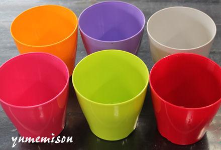 カラーのプラ鉢