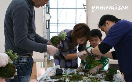 宮子花園の体験教室「苔玉づくり」