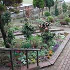 ハーブガーデンの花壇