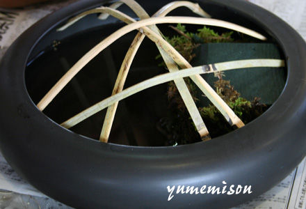 水盤に竹の棒を張ります。