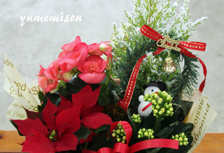 クリスマスの花かごセット