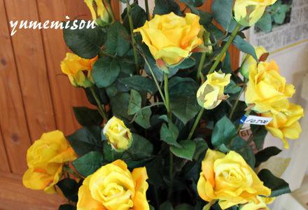 光触媒のバラ