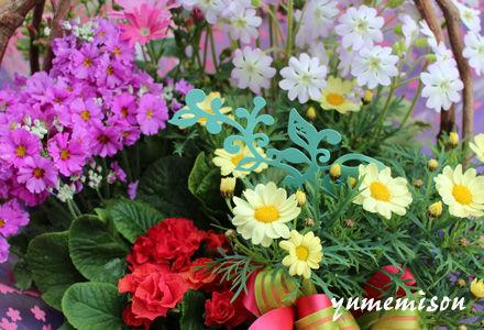 花カゴセット