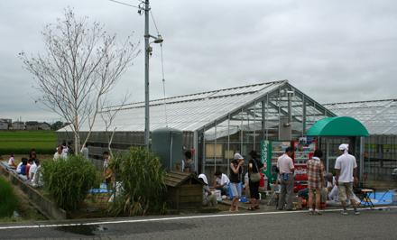 宮子花園の温室でバーベキュー大会