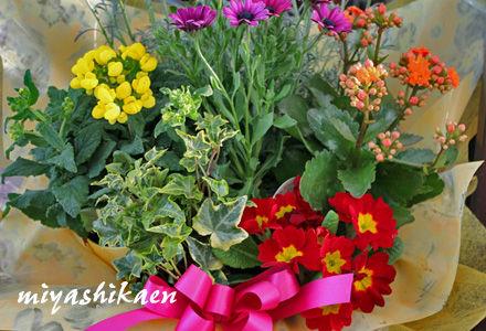花かごセット