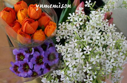 1月のフラワーアレンジ教室の花材