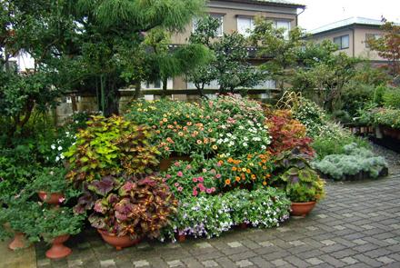 向かって左側の花壇