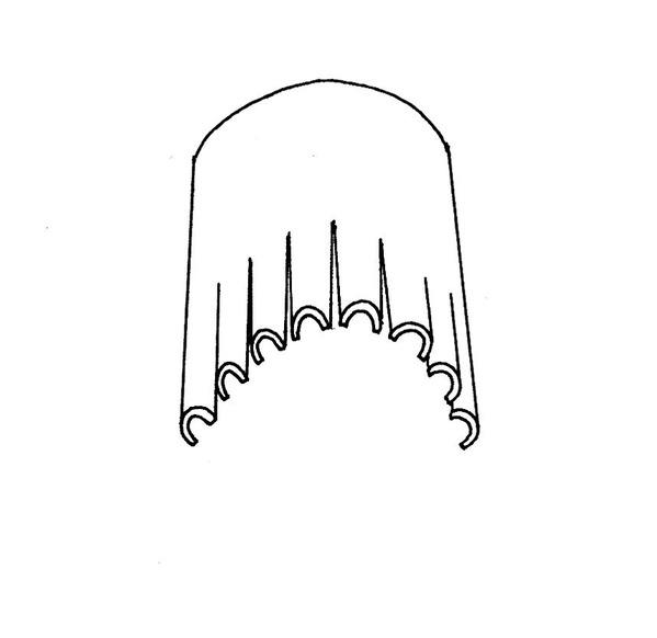 爪の分割03